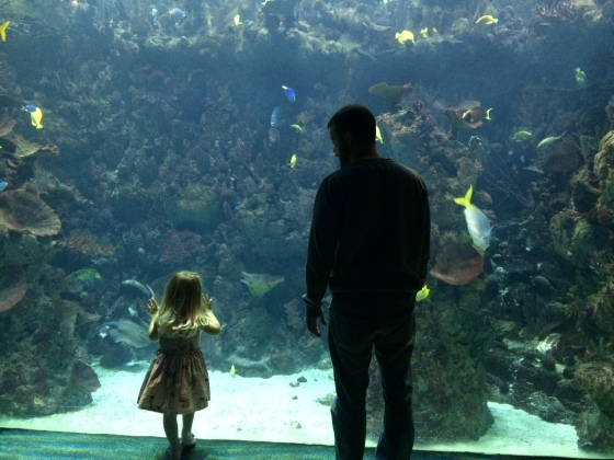 #PeanutsAdventures | Birthday trip to The Deep, finding Nemo with Daddy